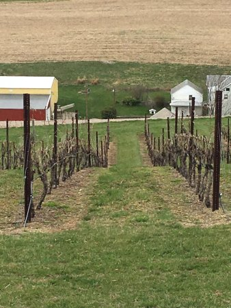 Andreas, PA: Galen Glen Winery
