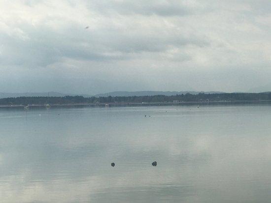 Muensing, Germany: Buchscharner Seewirt