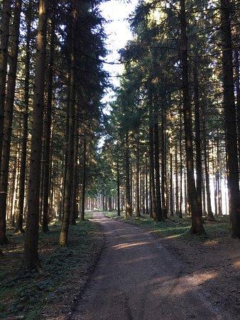 Bad Groenenbach, Γερμανία: photo7.jpg