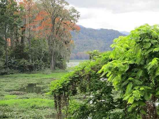 Orosi River Valley  ( El Valle del Rio Orosi ): Valle del Río Orosí. Vista del Lago desde el hotel campestre.
