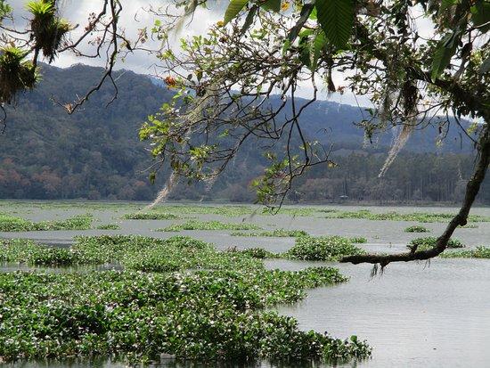 Orosi River Valley  ( El Valle del Rio Orosi ): Valle del río Orosí. Vista del lago.