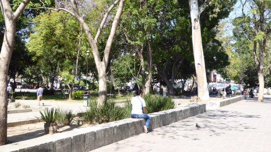 Parque Juarez  El Llano : Relaxing day