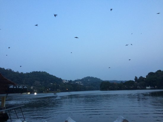 Kandy Guest House: photo2.jpg