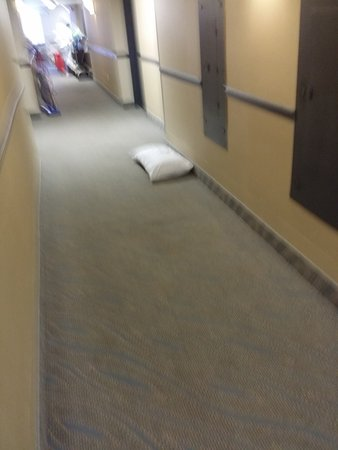 "West Springfield, MA: Pillow left on floor, then put on bed in room for customer to use. Had note on it ""For room 324"""