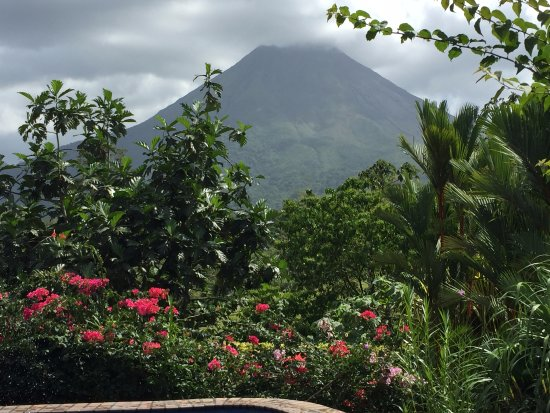 Arenal Manoa Hotel: View from the lounge chair at the pool