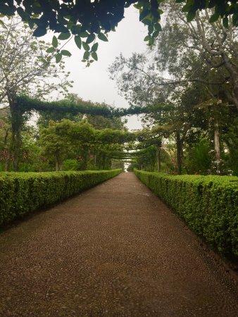 Palheiro Gardens : Wunderschön