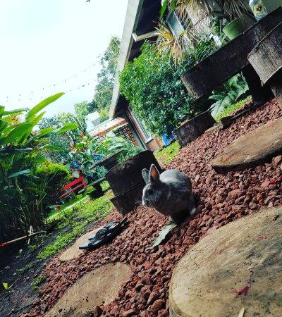 Hostel Bekuo: IMG_20160910_150818_large.jpg