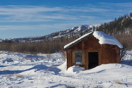 Inuvik, Canadá: Reindeer station