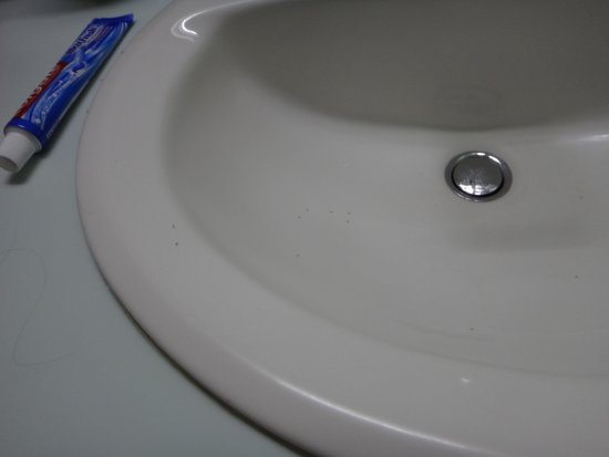 small black ants in bathroom sink small black ants in bathroom luxury how  to get rid . small black ants in bathroom sink ...