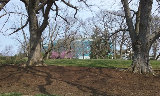 Wilmington, DE: Springtime at Nemours - Hospital in background