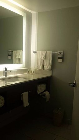 Bathroom Is Great Shower Is Great Lighting Is Wonderful - Bathroom place hialeah