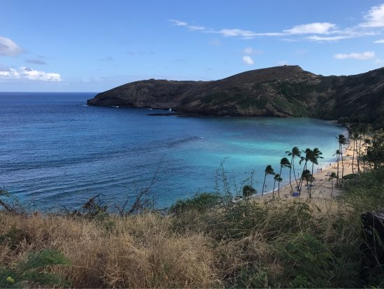 Majestic Circle Island Tour Review