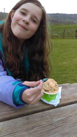 Monkton, UK: Best ice-cream ever !