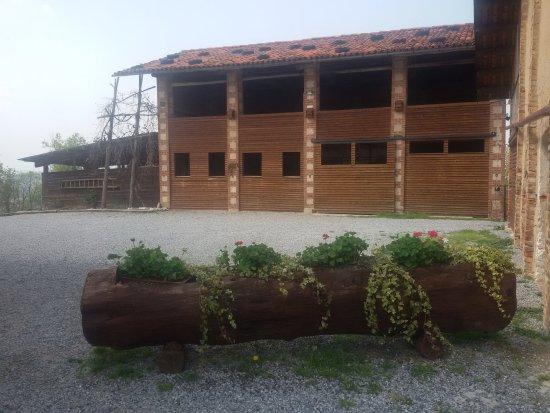 Villanova Mondovi, Italia: Cortile