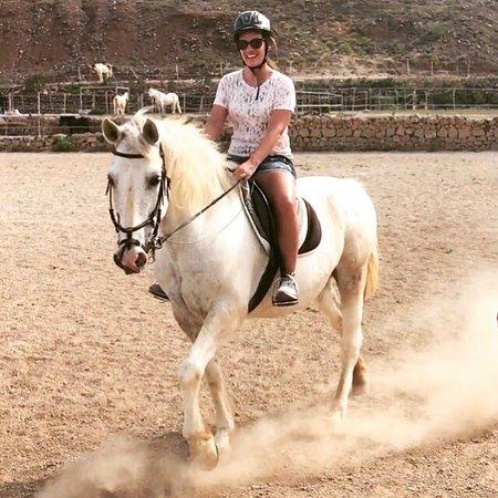 Horse Riding Adventures in Tenerife: photo1.jpg