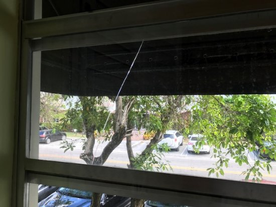 Bay Harbor Islands, FL: cracked window in my room....