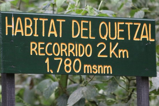 Pipeline Trail: Sign marking the best spot to see quetzals.