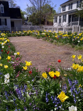 Colonial Williamsburg: Garden Behind The Joiner Shop 2017