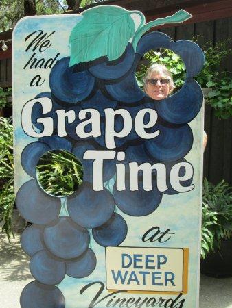Wadmalaw Island, Güney Carolina: Fun photo opts
