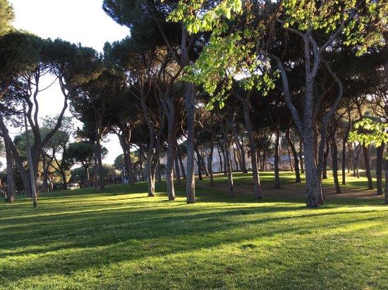 Dehesa de la Villa Park