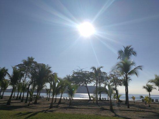 Tambor, Costa Rica: IMG_20170414_072843_large.jpg