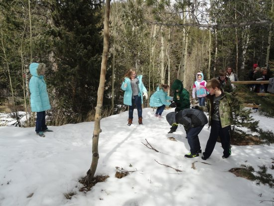 Manitou Springs, CO: These kids were glad to get out and stretch their legs. Snowball fight!