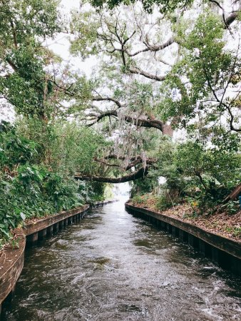Winter Park, FL: Canals connecting the various lakes