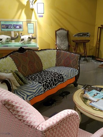 CU Museum of Natural History: Biolounge comfy sofas and science books