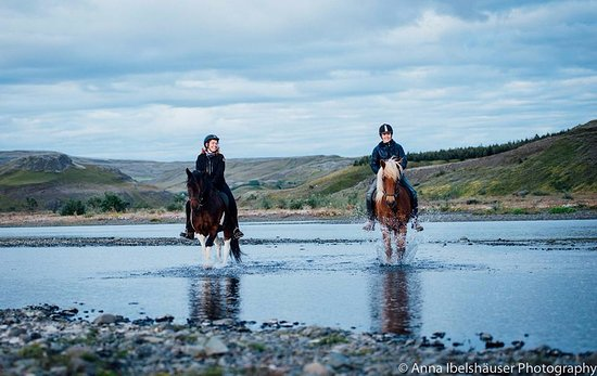 Riding Tours South Iceland: Daytour :)