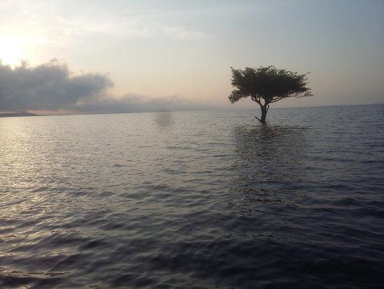 Praia do Tupé : encantador! Início da vazante (agosto)