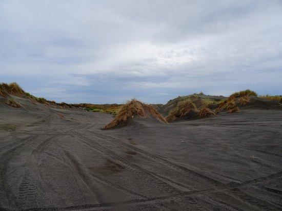 Whanganui, Nova Zelândia: Fun Offroad Adventures....just with Warrick!