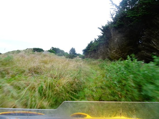 Whanganui, Νέα Ζηλανδία: Fun Offroad Adventures....just with Warrick!