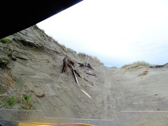 Уангануи, Новая Зеландия: Fun Offroad Adventures....just with Warrick!