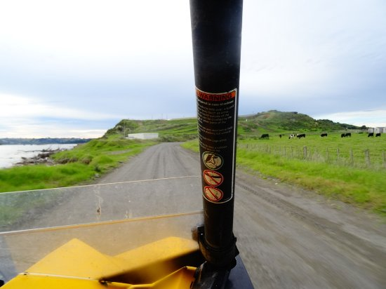 Whanganui, New Zealand: Fun Offroad Adventures....just with Warrick!