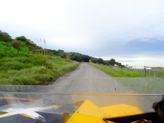Whanganui, نيوزيلندا: Fun Offroad Adventures....just with Warrick!