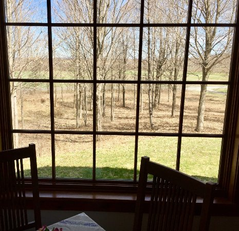Auburn, NY: Early Spring view from our table