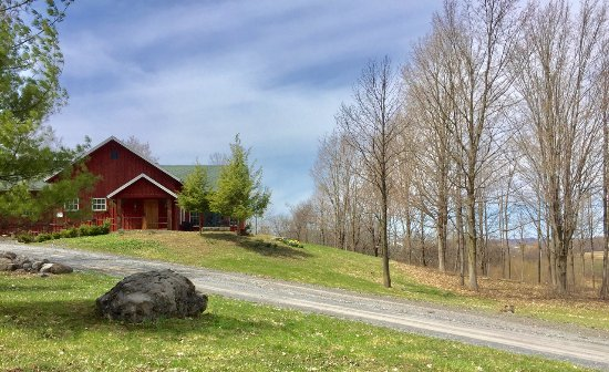 Auburn, NY: View from the driveway