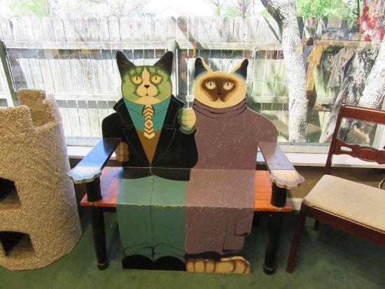 Smoky Mountain Cat House : Kitty bench
