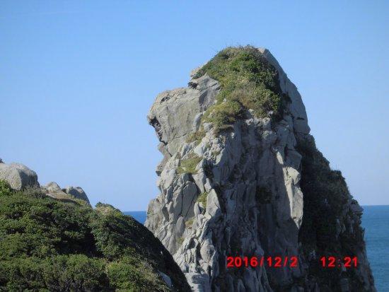 Saruiwa Foto