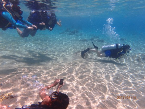 Tikila Bar: while swimming in front of Tikila, I took a pic of some of the divers below