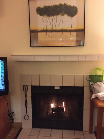 Vestal, NY: working fire place