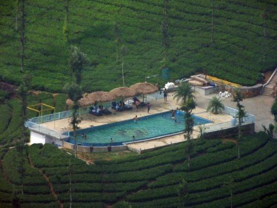 Picture of wild planet jungle resort devala - Plante jungle ...