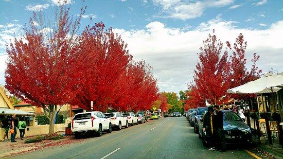 Adelaide Hills, Australia: Handhorf, Adelaide