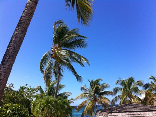"""South Coast, St. Thomas: This is the view from the """"budget' room- ocean seen over the restaurant roof (thus, """"budget"""" pri"""