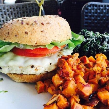True Food Kitchen Burger turkey burger - picture of true food kitchen, santa monica