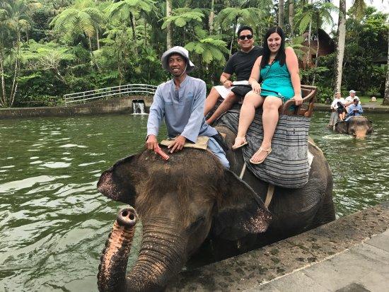 Elephant Safari Park & Lodge : photo3.jpg