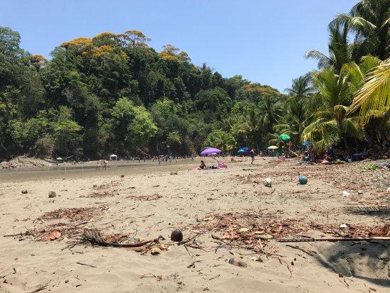 Ballena, Коста-Рика: photo0.jpg