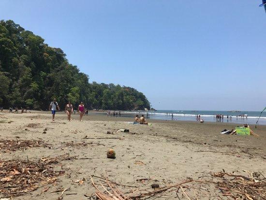 Ballena, Коста-Рика: photo2.jpg