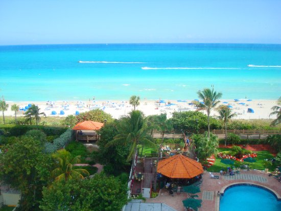 Lexington Hotel Miami Beach Reviews
