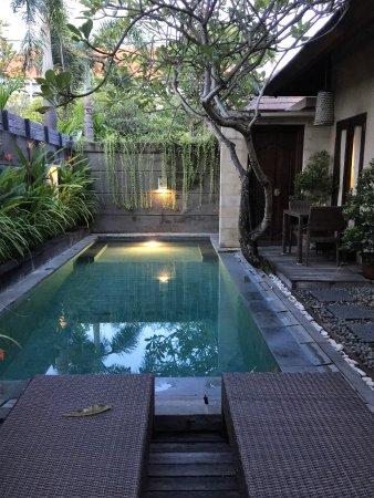 Nyuh Bali Villas Review